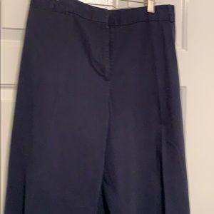 Talbots Blue Cotton Pants 24W